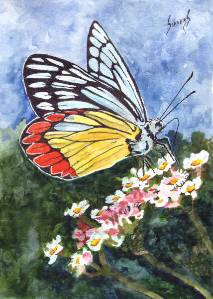 Painting - Butterfly 190224 by Sam Sidders