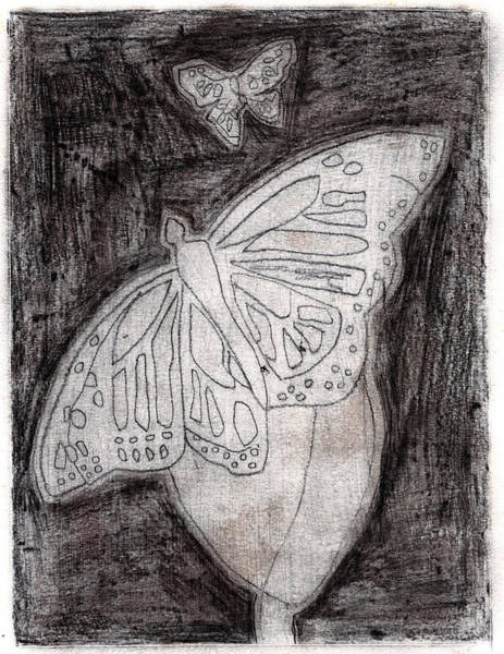 Drawing - Butterfly Garden At Night 13 by Artist Dot