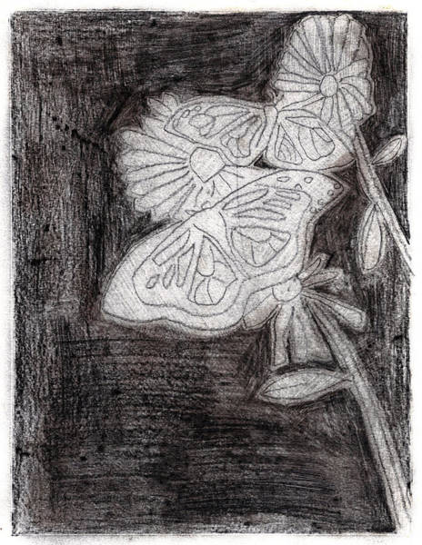 Drawing - Butterfly Garden At Night 15 by Artist Dot
