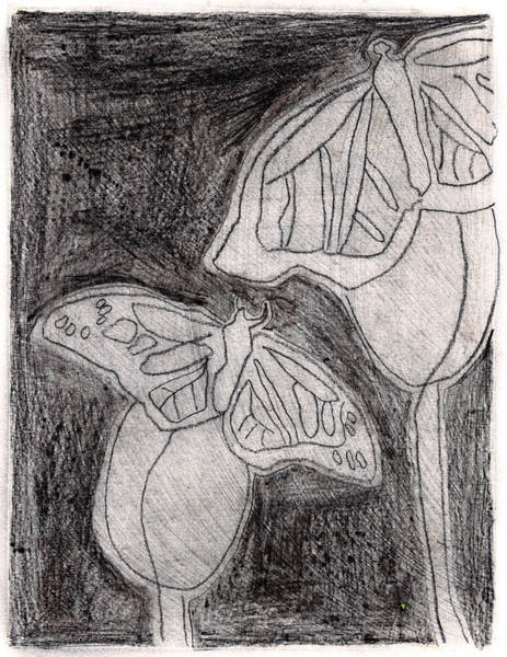 Drawing - Butterfly Garden At Night 17 by Artist Dot