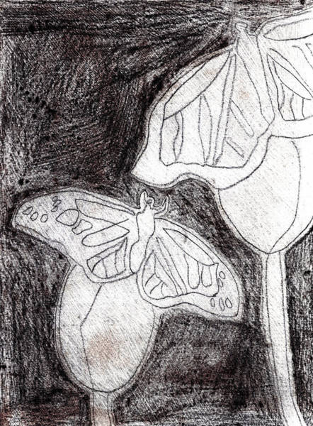 Drawing - Butterfly Garden At Night 22 by Artist Dot