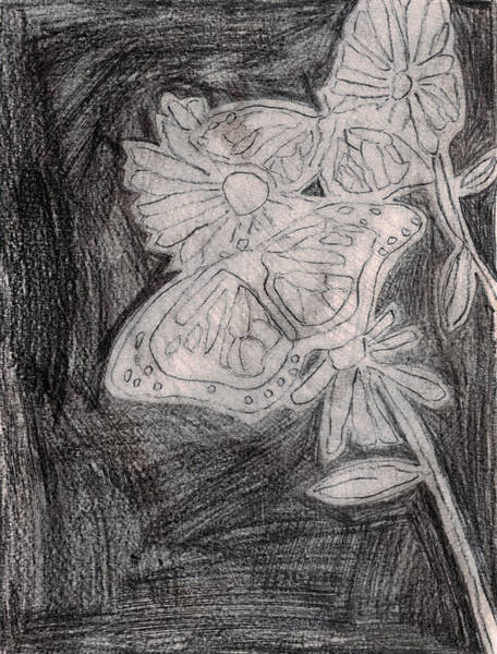 Drawing - Butterfly Garden At Night 24 by Artist Dot
