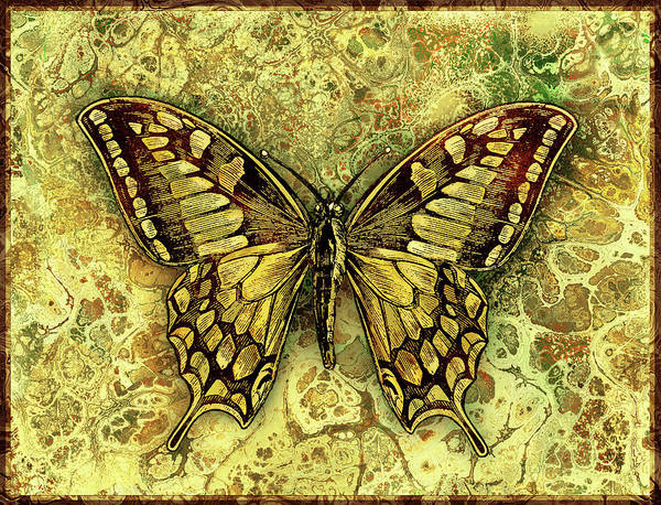 Wall Art - Digital Art - Butterfly In Gold-amber Collection by Grace Iradian