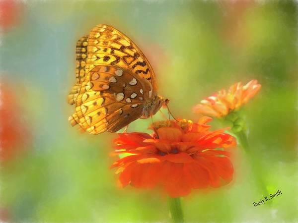 Digital Art - Butterfly On Red Flower by Rusty R Smith