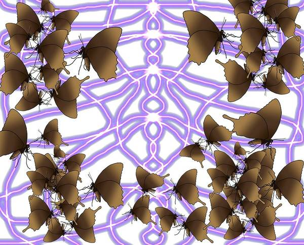 Drawing - Come Into My Web Butterflies by Joan Stratton