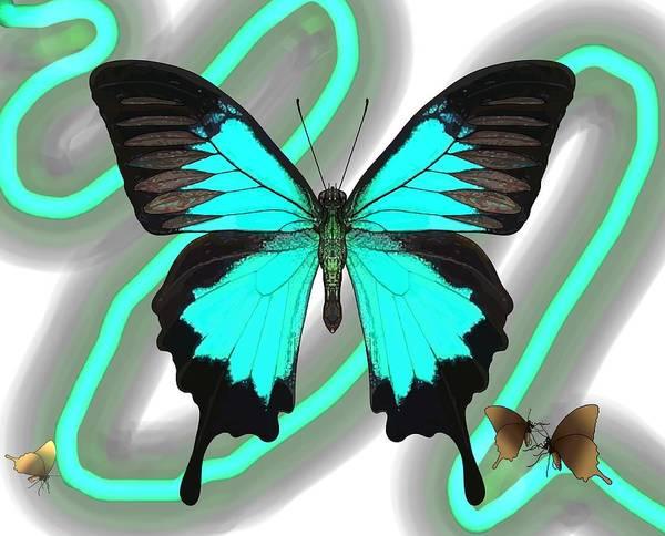 Digital Art - Butterfly Patterns 23 by Joan Stratton