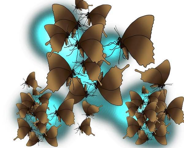 Drawing - Butterflies Blue Haze by Joan Stratton