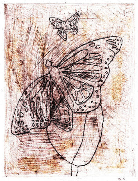 Drawing - Butterfly Scratch Sketch 13 by Artist Dot