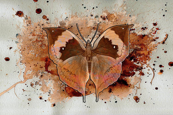 Digital Art - Butterfly Splash by Jacqui Boonstra