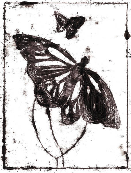 Drawing - Butterfly Starter Drawing 5 by Artist Dot