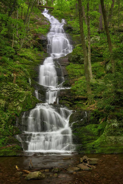 Delaware State Park Wall Art - Photograph -  Buttermilk Falls by Susan Candelario