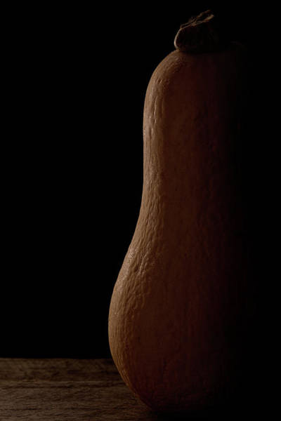 Wall Art - Photograph - Butternut Squash by Richard Rizzo