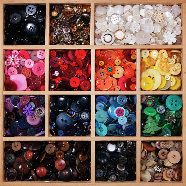 Wall Art - Photograph - Button Tray by Lisa Stokes
