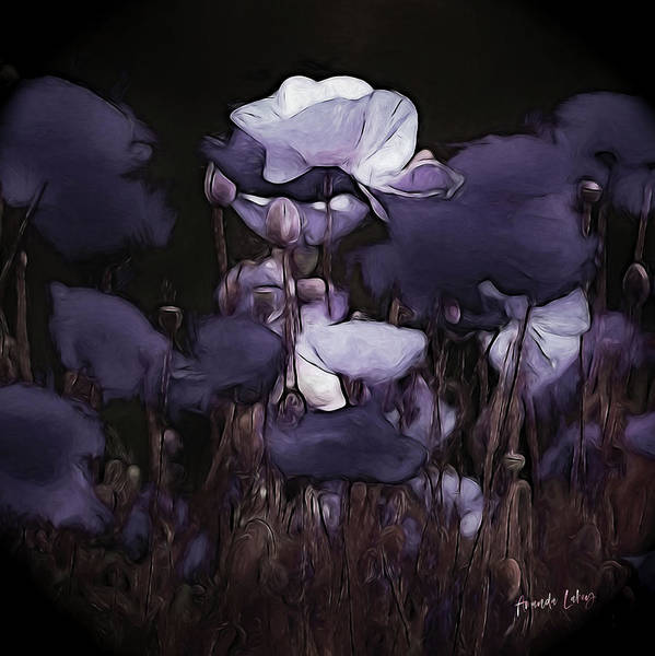 Wall Art - Mixed Media - Poppies By Moonlight by Amanda Lakey