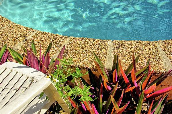 Wall Art - Photograph - By The Pool by Zal Latzkovich