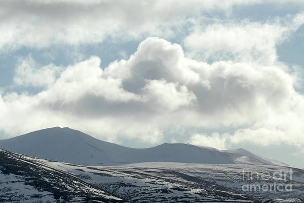 Photograph - Bynack More - Cairngorm Mountains by Phil Banks