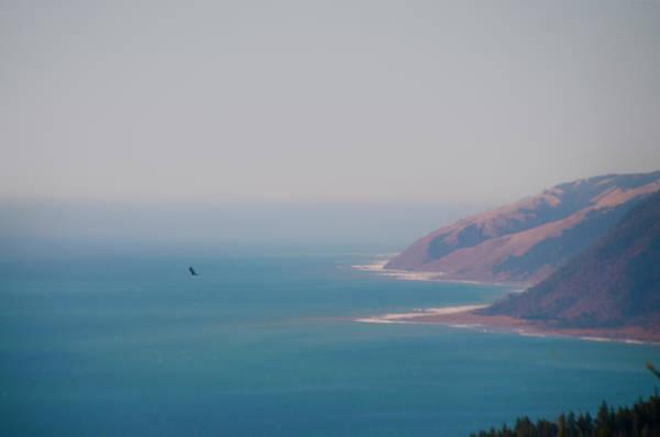 Photograph - C Alifornia - The Lost Coast - Black Sands Beach by Bill Cannon
