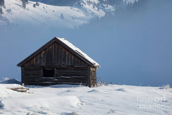 Wall Art - Photograph - Cabin In The Mists by Idaho Scenic Images Linda Lantzy