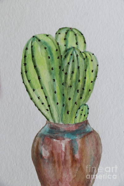 Wall Art - Photograph - Cacti In A Pot by Christiane Schulze Art And Photography