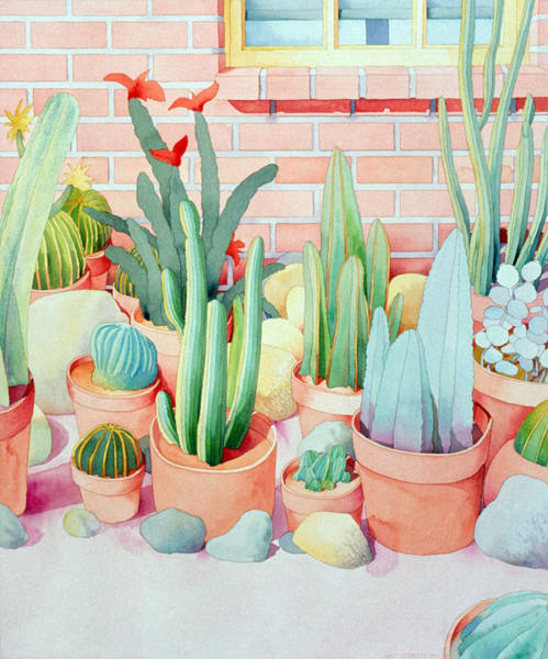 Outdoors Digital Art - Cacti In Terra Cotta Pots by Art Curtis
