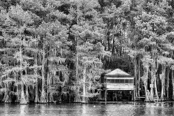 Photograph - Caddo Lake Black And White by JC Findley