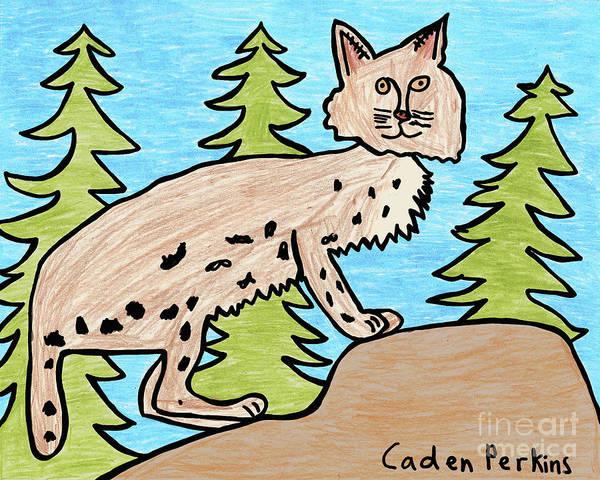 Drawing - Caden's Bobcat by Amy E Fraser and Caden Fraser Perkins