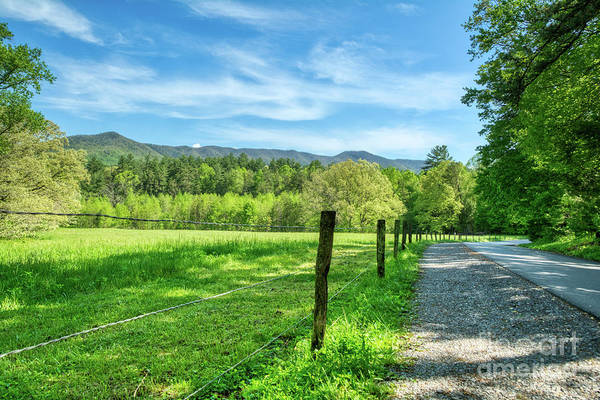 Photograph - Cades Cove In Spring by Mel Steinhauer