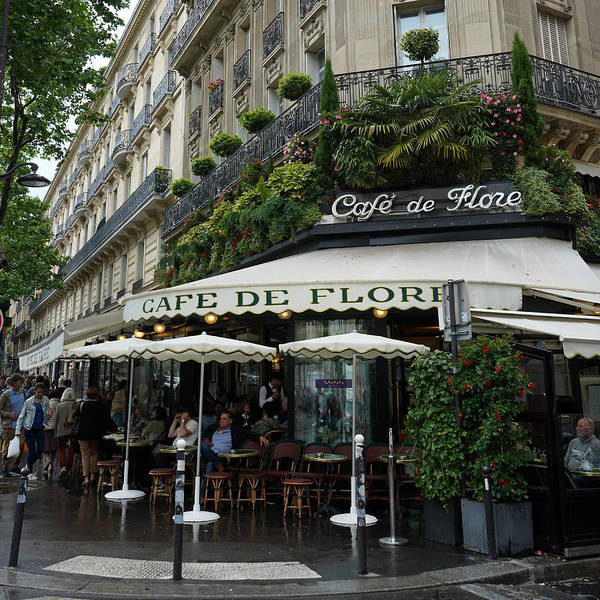 Photograph - Cafe De Flore by Andrew Fare