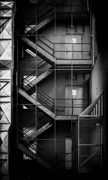 Wall Art - Photograph - Caged by Matthew Blum