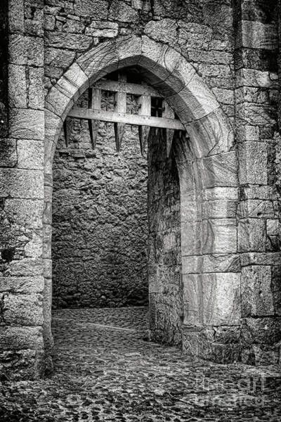 Wall Art - Photograph - Cahir Castle Gate by Olivier Le Queinec
