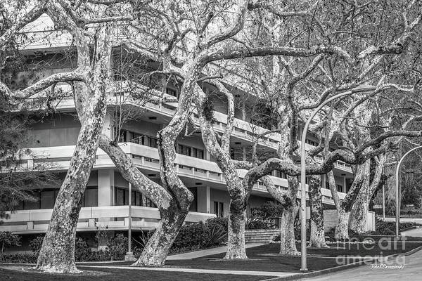 Photograph - Cal Poly Pomona Landscape by University Icons