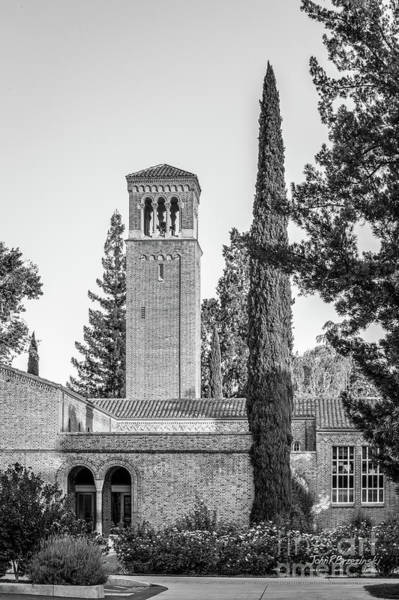 Photograph - Cal State University Chico Trinity Hall by University Icons