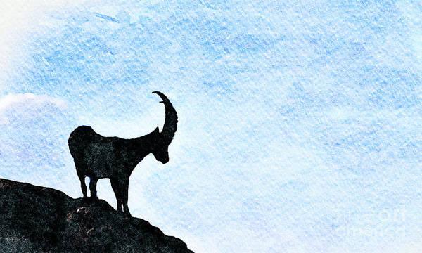Ibex Wall Art - Photograph - Calanda Ibex by DiFigiano Photography