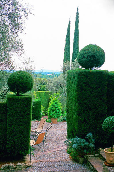 Patio Photograph - Caldades Patio With Ornamental Hedges by Richard Felber