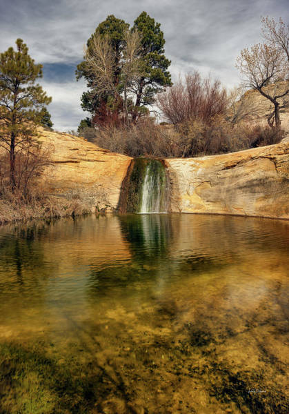 Calf Creek Pool Art Print by Leland D Howard