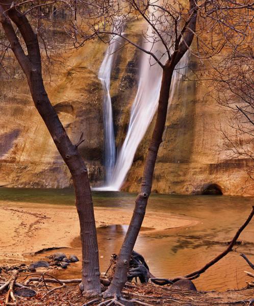 Photograph - Calf Creek Utah by Leland D Howard