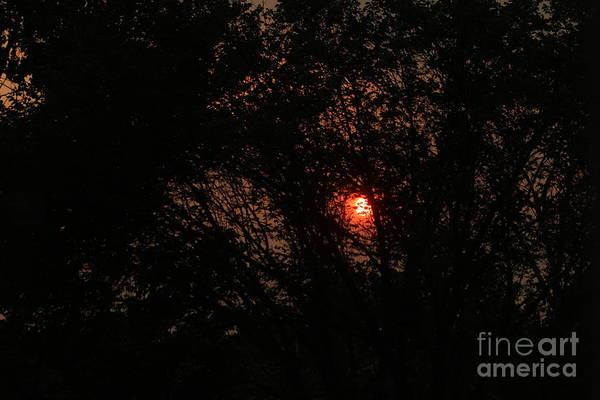 Photograph - Calgary Sunrise by Ann E Robson