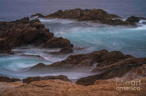 Wall Art - Photograph - California Coastal Water Motion by Mike Reid