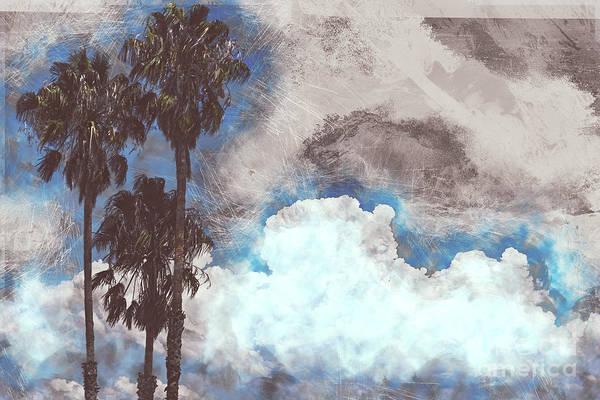 Photograph - California Dreamin by Matthew Nelson