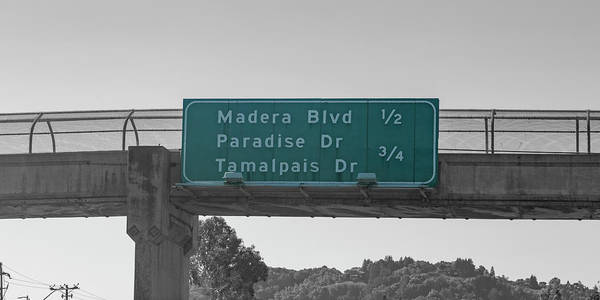 Wall Art - Photograph - California Highway Sign Number 156 by Betsy Knapp