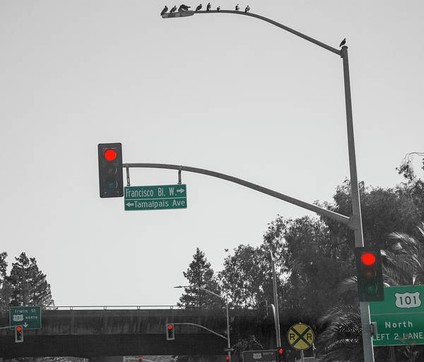 Wall Art - Photograph - California Red Lights 101 by Betsy Knapp
