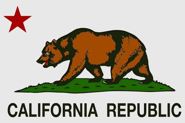 Wall Art - Digital Art - California State Flag - T-shirt by Daniel Hagerman