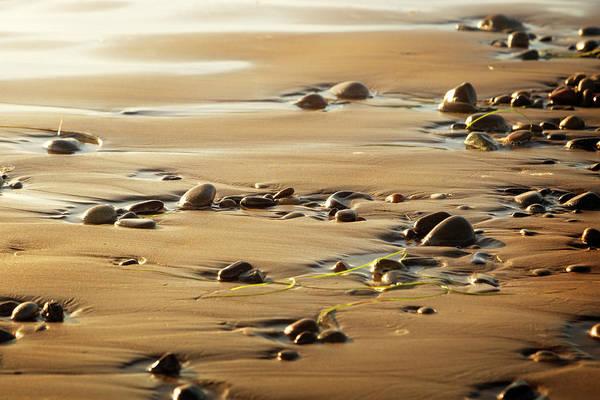 Wall Art - Photograph - California Sunset II by Ricky Barnard