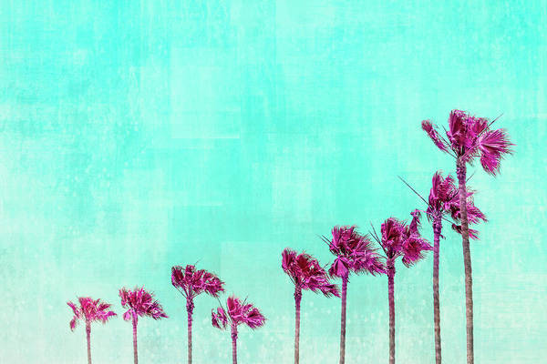Wall Art - Photograph - California Vibes - Psychedelic  by Melanie Viola