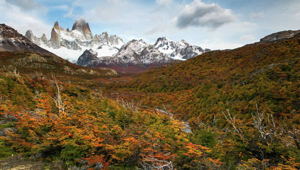 Patagonia Photograph - Calihue by Ryan Weddle