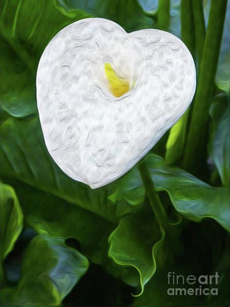 Digital Art - Calla Lily I by Kenneth Montgomery