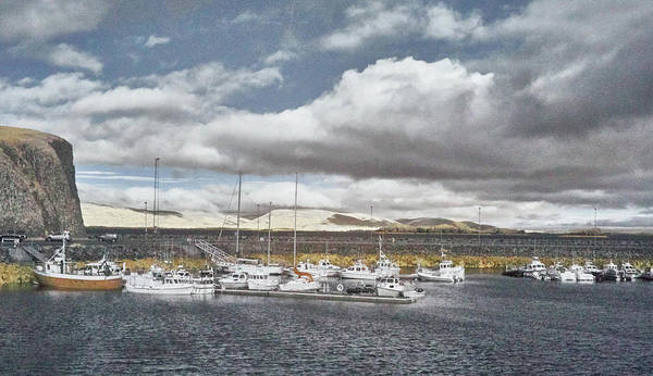 Photograph - Calm Harbor by Jim Cook