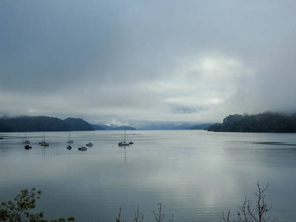 Queen Charlotte Sound Wall Art - Photograph - Calm Harbour by Lisa Crawford