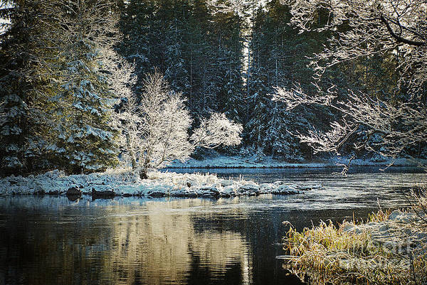 Riverside Wall Art - Photograph - Calm Lake Environment In Winter by Conny Sjostrom