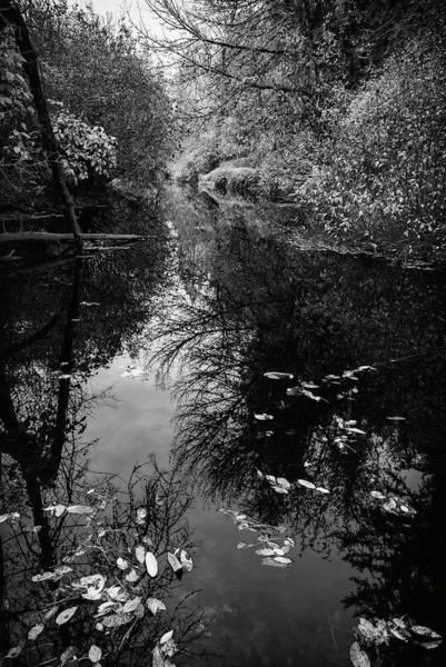 Photograph - Calm Water Fall by Steven Clark